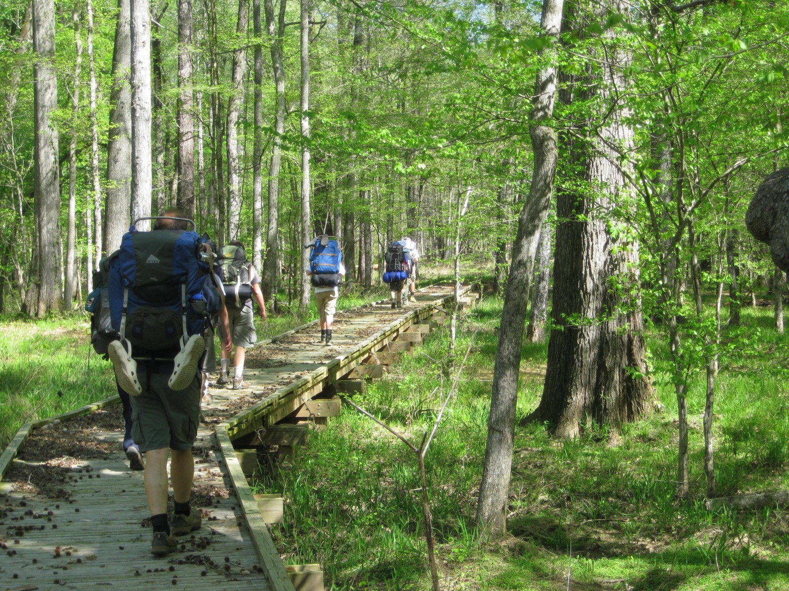 Discover South Carolina Outdoors Hiking